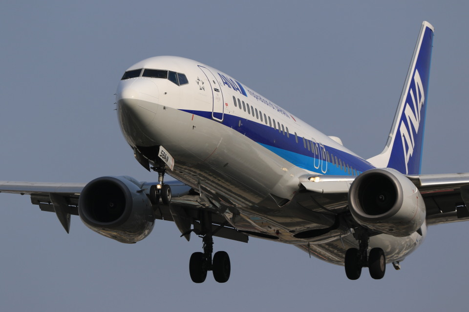 rokko2000さんの全日空 Boeing 737-800 (JA56AN) 航空フォト