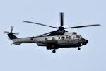 sepia2016さんが、木更津飛行場で撮影した陸上自衛隊 EC225LP Super Puma Mk2+の航空フォト(写真)