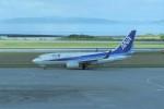 kumagorouさんが、那覇空港で撮影した全日空 737-781の航空フォト(飛行機 写真・画像)