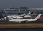 だだちゃ豆さんが、羽田空港で撮影したチャイナエアライン A330-302の航空フォト(写真)