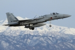 Hottyさんが、小松空港で撮影した航空自衛隊 F-15J Eagleの航空フォト(写真)