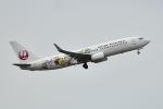 リョウさんが、伊丹空港で撮影した日本航空 737-846の航空フォト(写真)