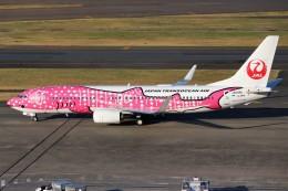 ばっきーさんが、羽田空港で撮影した日本トランスオーシャン航空 737-8Q3の航空フォト(写真)