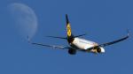 tomobileさんが、成田国際空港で撮影したMIATモンゴル航空 737-8SHの航空フォト(飛行機 写真・画像)