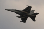 OMAさんが、岩国空港で撮影したアメリカ海軍 EA-18G Growlerの航空フォト(写真)