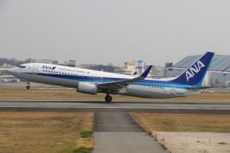 HK Express43さんが、伊丹空港で撮影した全日空 737-881の航空フォト(写真)