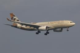 ぽんさんが、香港国際空港で撮影したエティハド航空 A330-243の航空フォト(飛行機 写真・画像)