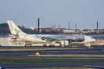 xingyeさんが、ジェネラル・エドワード・ローレンス・ローガン国際空港で撮影したアゾレス・エアラインズ A330-223の航空フォト(写真)