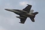 OMAさんが、岩国空港で撮影したアメリカ海軍 EA-18G Growlerの航空フォト(飛行機 写真・画像)