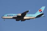 masa707さんが、ロサンゼルス国際空港で撮影した大韓航空 A380-861の航空フォト(写真)