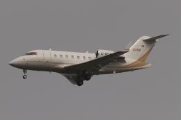 木人さんが、成田国際空港で撮影したロンドン・エア・サービス CL-600-2B16 Challenger 650の航空フォト(飛行機 写真・画像)