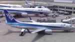 AlphaWing737ケインさんが、那覇空港で撮影した全日空 737-881の航空フォト(写真)