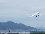 アイスコーヒーさんが、函館空港で撮影した日本航空 777-346の航空フォト(写真)
