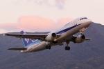 じーのさんさんが、八丈島空港で撮影した全日空 A320-211の航空フォト(写真)