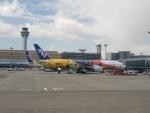 MRJさんが、羽田空港で撮影した全日空 777-281/ERの航空フォト(写真)