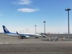 MRJさんが、羽田空港で撮影した全日空 737-881の航空フォト(写真)