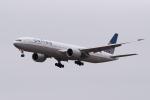 ぎんじろーさんが、成田国際空港で撮影したユナイテッド航空 777-322/ERの航空フォト(写真)