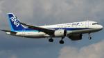 Ocean-Lightさんが、成田国際空港で撮影した全日空 A320-271Nの航空フォト(飛行機 写真・画像)