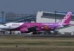 tassさんが、成田国際空港で撮影したピーチ A320-214の航空フォト(飛行機 写真・画像)