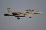 OMAさんが、岩国空港で撮影したアメリカ海兵隊 F/A-18D Hornetの航空フォト(飛行機 写真・画像)