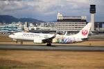 ジャガイモさんが、伊丹空港で撮影した日本航空 737-846の航空フォト(写真)