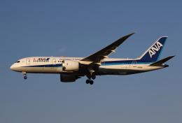 MOHICANさんが、福岡空港で撮影した全日空 787-8 Dreamlinerの航空フォト(飛行機 写真・画像)