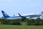 スターアライアンスKMJ まいやんさんが、宮古空港で撮影した全日空 737-881の航空フォト(写真)