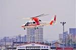 hidetsuguさんが、札幌飛行場で撮影した朝日航洋 AS365N3 Dauphin 2の航空フォト(写真)