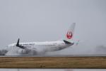 Gg55さんが、秋田空港で撮影した日本航空 737-846の航空フォト(写真)