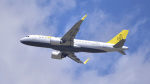パンダさんが、成田国際空港で撮影したロイヤルブルネイ航空 A320-251Nの航空フォト(写真)