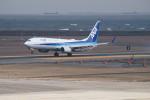 kij niigataさんが、新潟空港で撮影した全日空 737-881の航空フォト(写真)