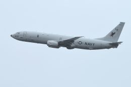 うめやしきさんが、厚木飛行場で撮影したアメリカ海軍 P-8A (737-8FV)の航空フォト(写真)