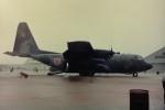 ヒロリンさんが、小松空港で撮影した航空自衛隊 C-130H Herculesの航空フォト(写真)