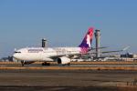たまさんが、羽田空港で撮影したハワイアン航空 A330-243の航空フォト(写真)