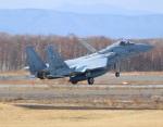 FY1030さんが、千歳基地で撮影した航空自衛隊 F-15J Eagleの航空フォト(写真)