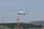 ☆NSさんが、紋別空港で撮影した全日空 737-881の航空フォト(写真)