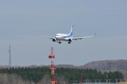 ☆NSさんが、紋別空港で撮影した全日空 737-881の航空フォト(飛行機 写真・画像)