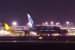 ladyinredさんが、成田国際空港で撮影した全日空 A380-841の航空フォト(写真)