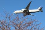 jjieさんが、成田国際空港で撮影したユナイテッド航空 787-8 Dreamlinerの航空フォト(写真)