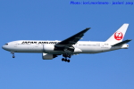 いおりさんが、羽田空港で撮影した日本航空 777-289の航空フォト(写真)
