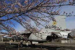 musashiさんが、高松空港で撮影した航空自衛隊 T-2の航空フォト(飛行機 写真・画像)