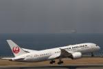 さんたまるたさんが、中部国際空港で撮影した日本航空 787-8 Dreamlinerの航空フォト(写真)