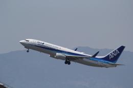 ANA744Foreverさんが、福岡空港で撮影した全日空 737-881の航空フォト(写真)