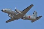 デルタおA330さんが、入間飛行場で撮影した航空自衛隊 YS-11A-402EBの航空フォト(写真)