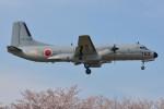 デルタおA330さんが、入間飛行場で撮影した航空自衛隊 YS-11A-402EAの航空フォト(写真)