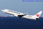いおりさんが、羽田空港で撮影した日本航空 737-846の航空フォト(写真)