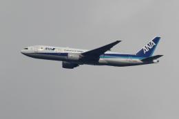 アイトムさんが、八尾空港で撮影した全日空 777-281/ERの航空フォト(飛行機 写真・画像)