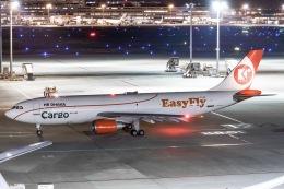 ズイズイさんが、羽田空港で撮影したイージー・フライ・エクスプレス A300C4-605Rの航空フォト(飛行機 写真・画像)