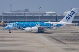 JA56SSさんが、関西国際空港で撮影した全日空 A380-841の航空フォト(写真)