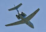 鈴鹿@風さんが、名古屋飛行場で撮影した航空自衛隊 U-125A (BAe-125-800SM)の航空フォト(写真)